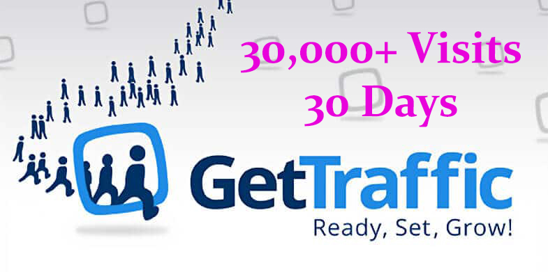 Daily 1000+ organic WEB TRAFFIC for a month