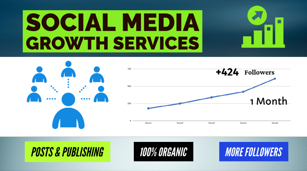 Social media growth Services - Organic Promotion for Social Profile / Company Page