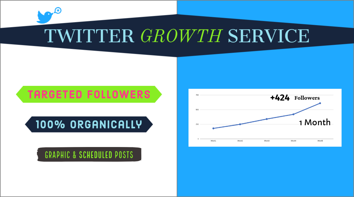 Twitter Growth Service - Organic Twitter Promotion