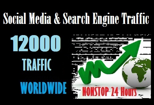 Drive 12000 web traffic from Social Media and Search Engine to your site