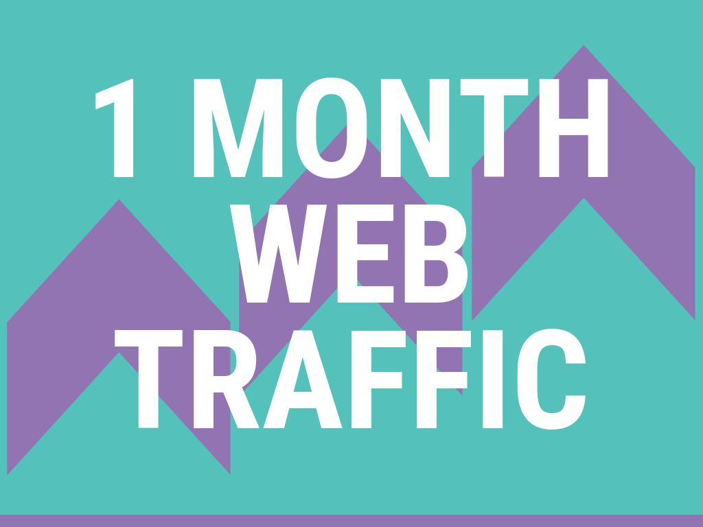 UNLIMITED WEB TRAFFIC FOR 1 MONTH