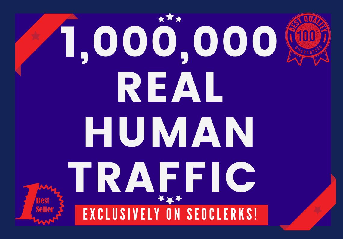 Send 1,000,000+ Real Human Traffic from GOOGLE,YAHOO,BING etc.