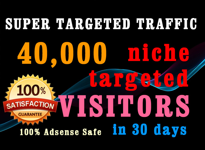 Niche targeted 40K WEB TRAFFIC within 30 days