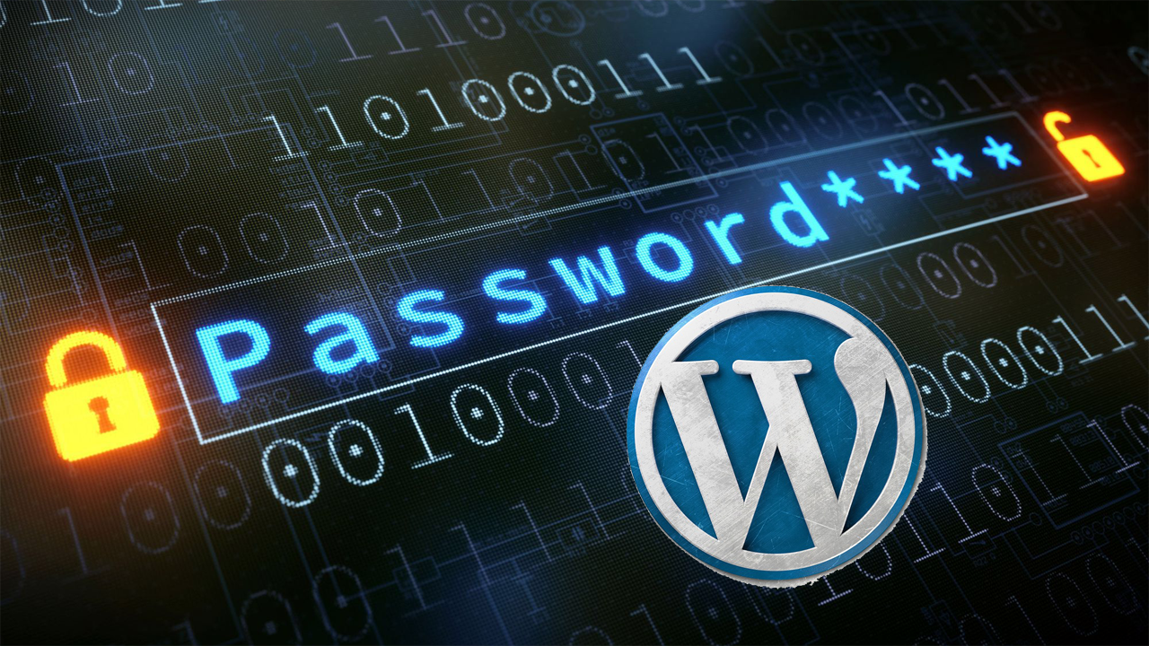 Security protocols against Hacking for WordPress website