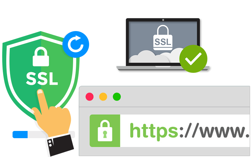 Install SSL Certificate on Your Website or WordPress & Free SSL too