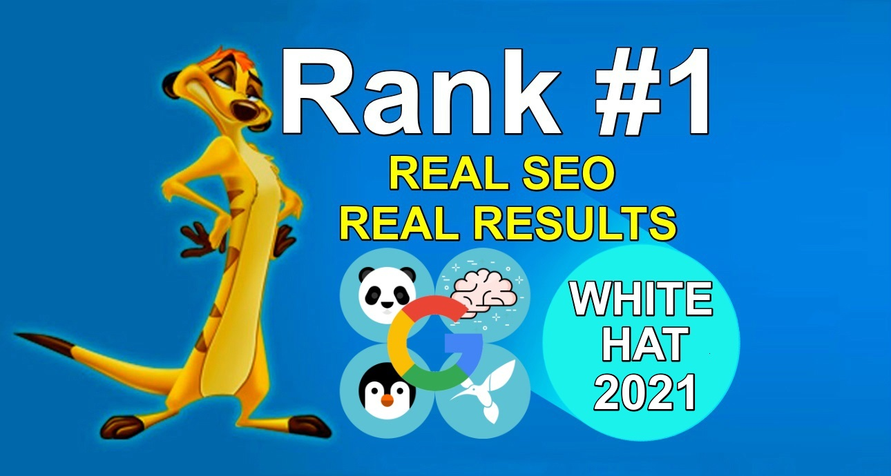 I will be your full service professional SEO agency