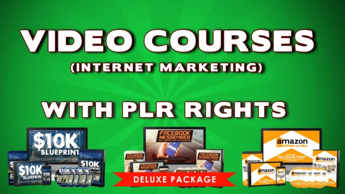 give over 150 plr and MRR internet marketing and make money video Courses