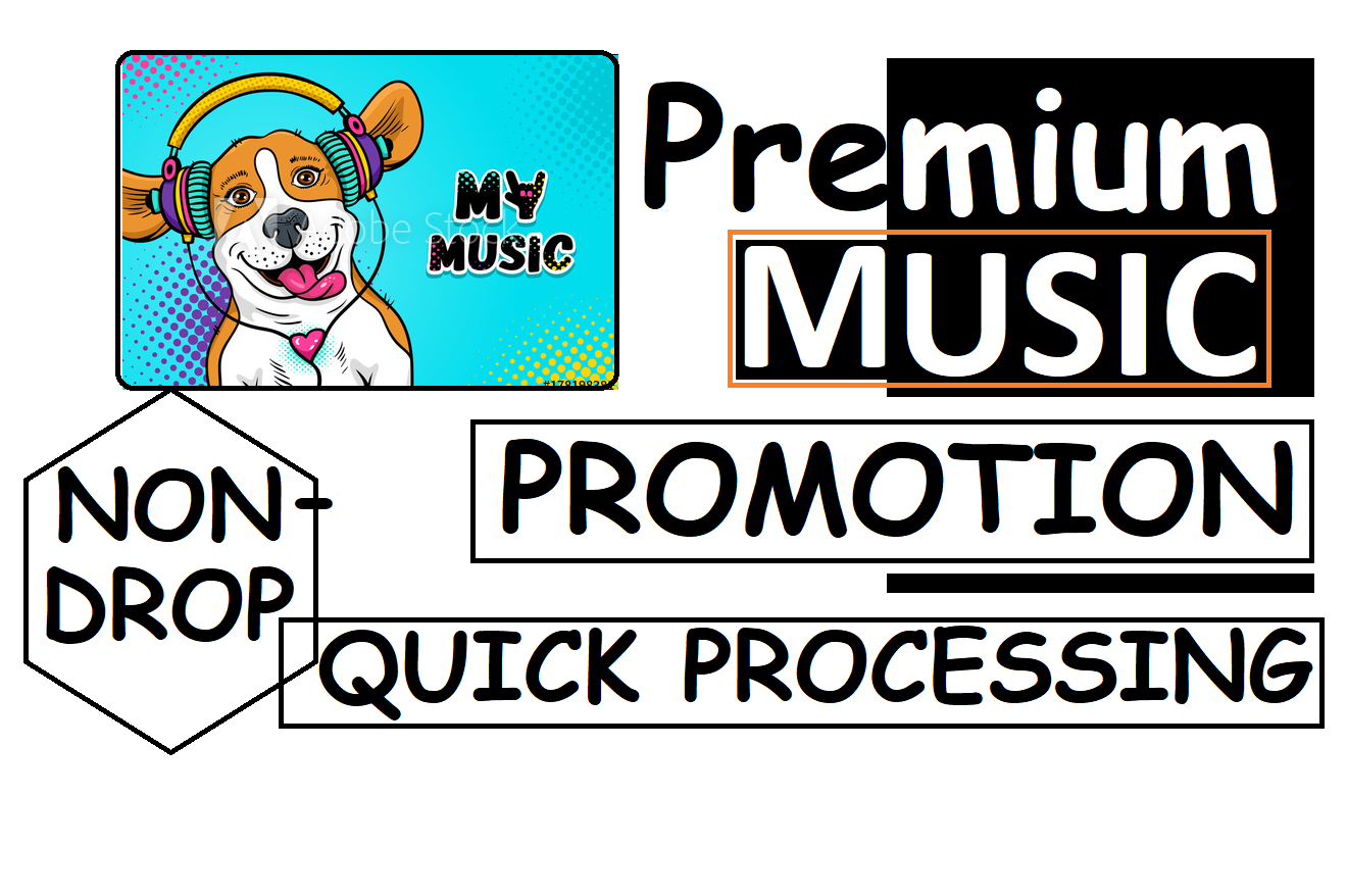 PREMIUM MUSIC PROMOTION QUICK PROCESSING NON-DROP