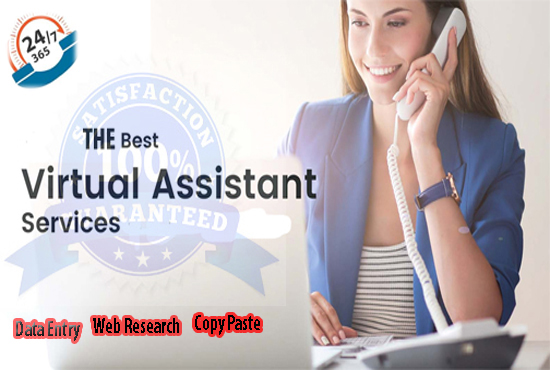 I will be your virtual assistant, data entry, web research, copy paste