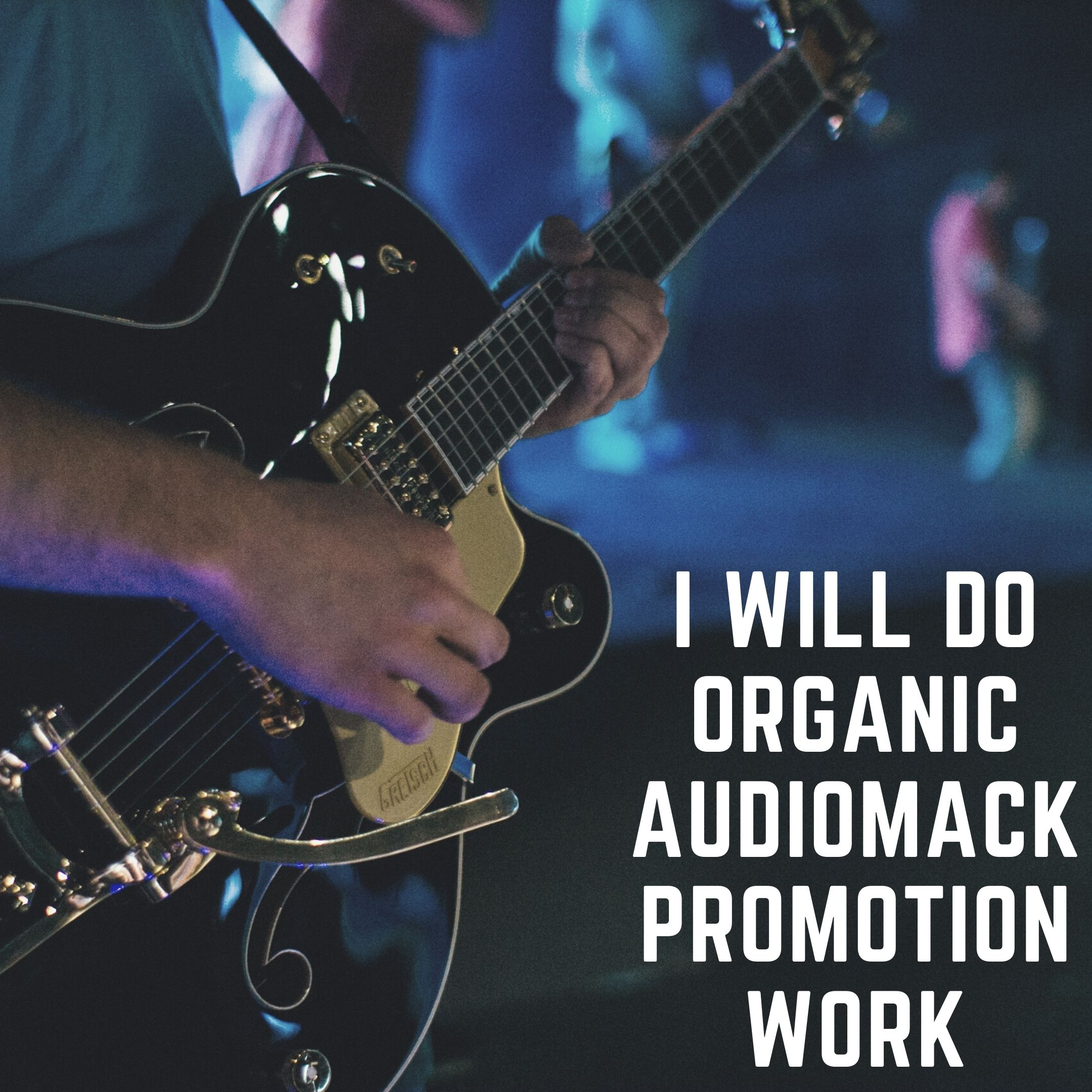 I will do organic audiomack promotion work