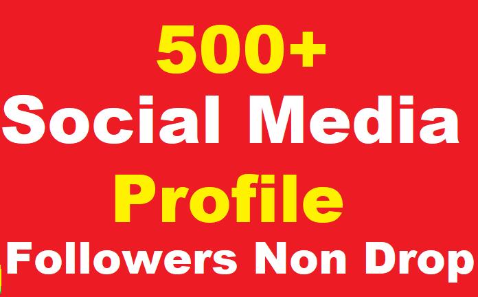 Safe 500+ Social Profile Followers Instant Start