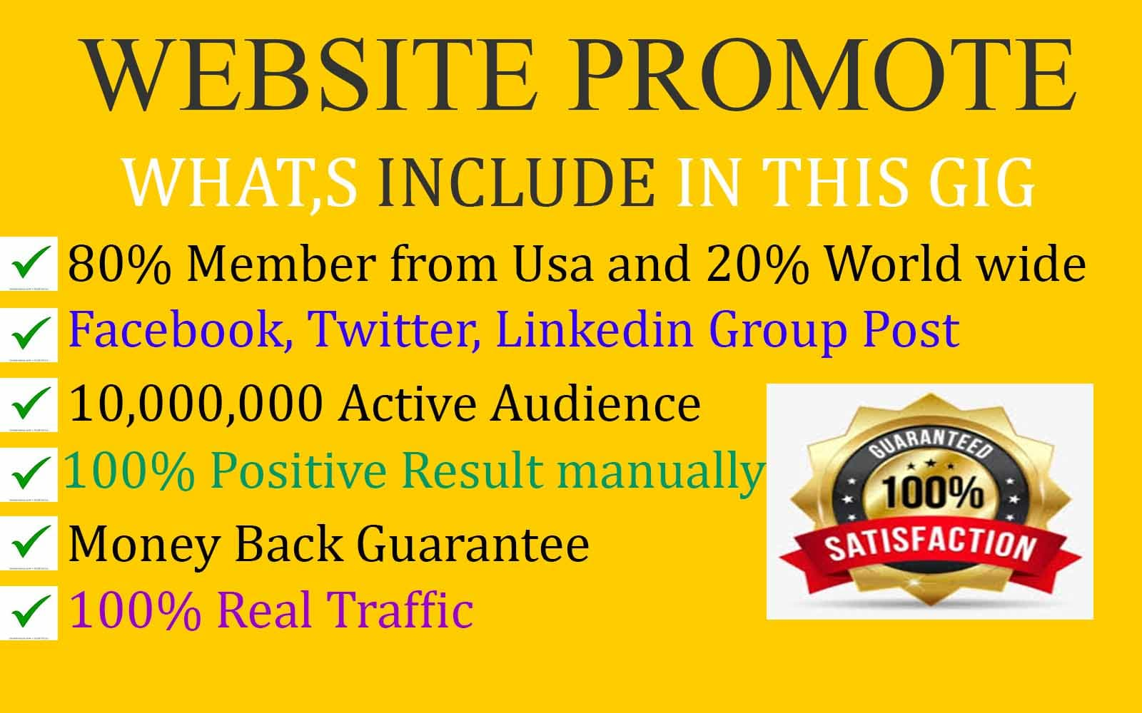 I will promote and advertise your website, blog and business to social media people