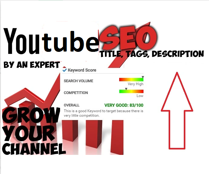 will do youtube SEO of your video,  write title description tags