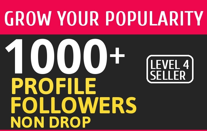 Add 1000 High Quality Fast Profile Followers NON DROP