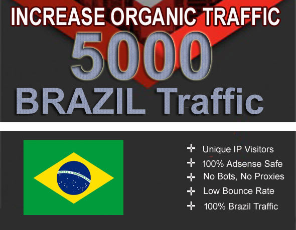 5,000 brazil high quality targeted website traffic