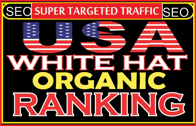 explode your website ranking with niche seo targeted USA web traffic