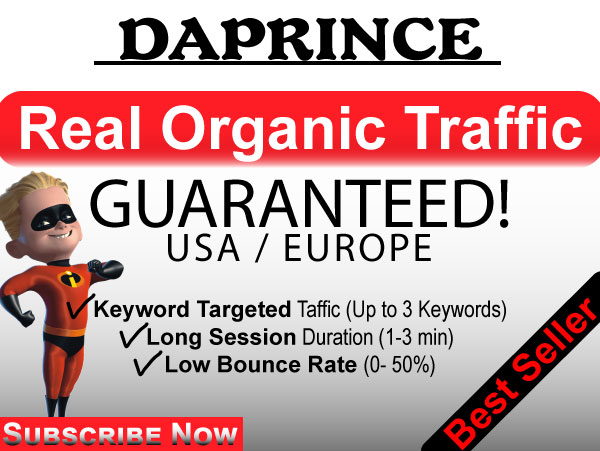 USA real human Website TRAFFIC Monthly Service