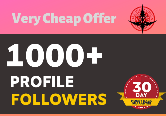 Add 1000 high quality profile followers instant start