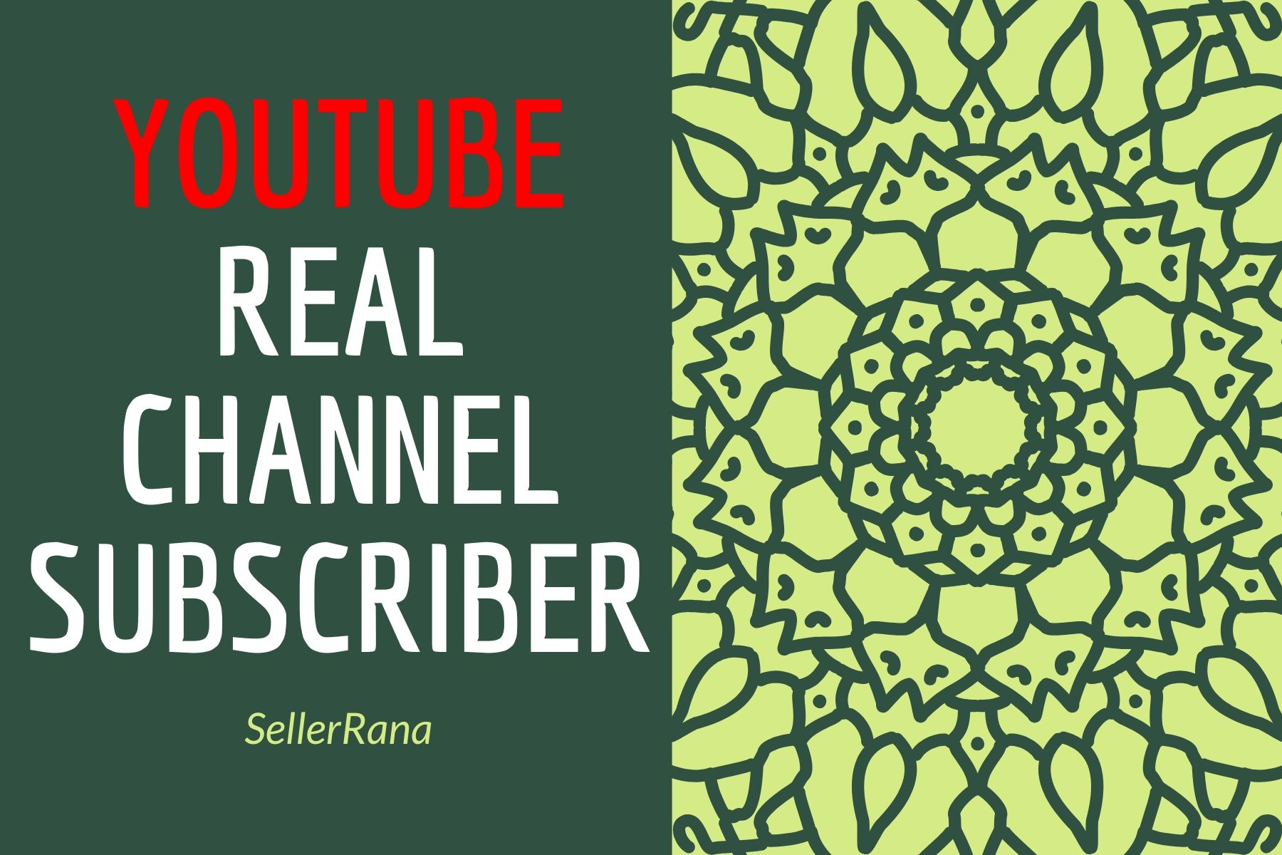 Real Youtube social media promotion pack from USA, France And Worldwide Delivery Within 2-24 hours
