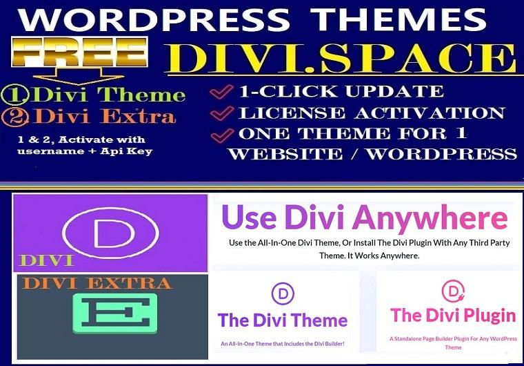 Install Divi Anywhere Theme With Username Plus Api Key / Divi Space Optional