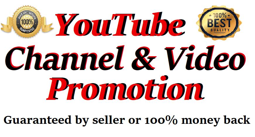 High Quality Organic YouTube Video Promotion Social Media Marketing