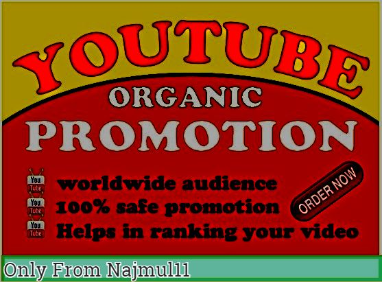 Get Instant Manually Do Youtube Video Promotion Non-Drop lifetime refile guarantee