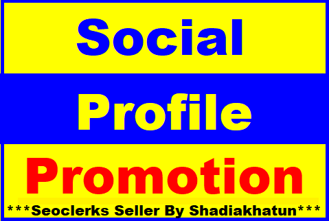 Add Social Profile Followers Promotion High Quality Super Fast Delivery