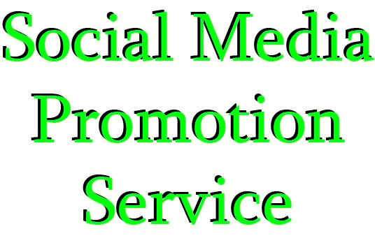 Social Media profile Promotion Instnat