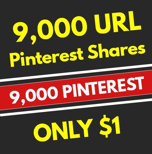 9,000 High Quality PR10 Pinterest Web Pin Social Signals - SEO RANKING FACTOR