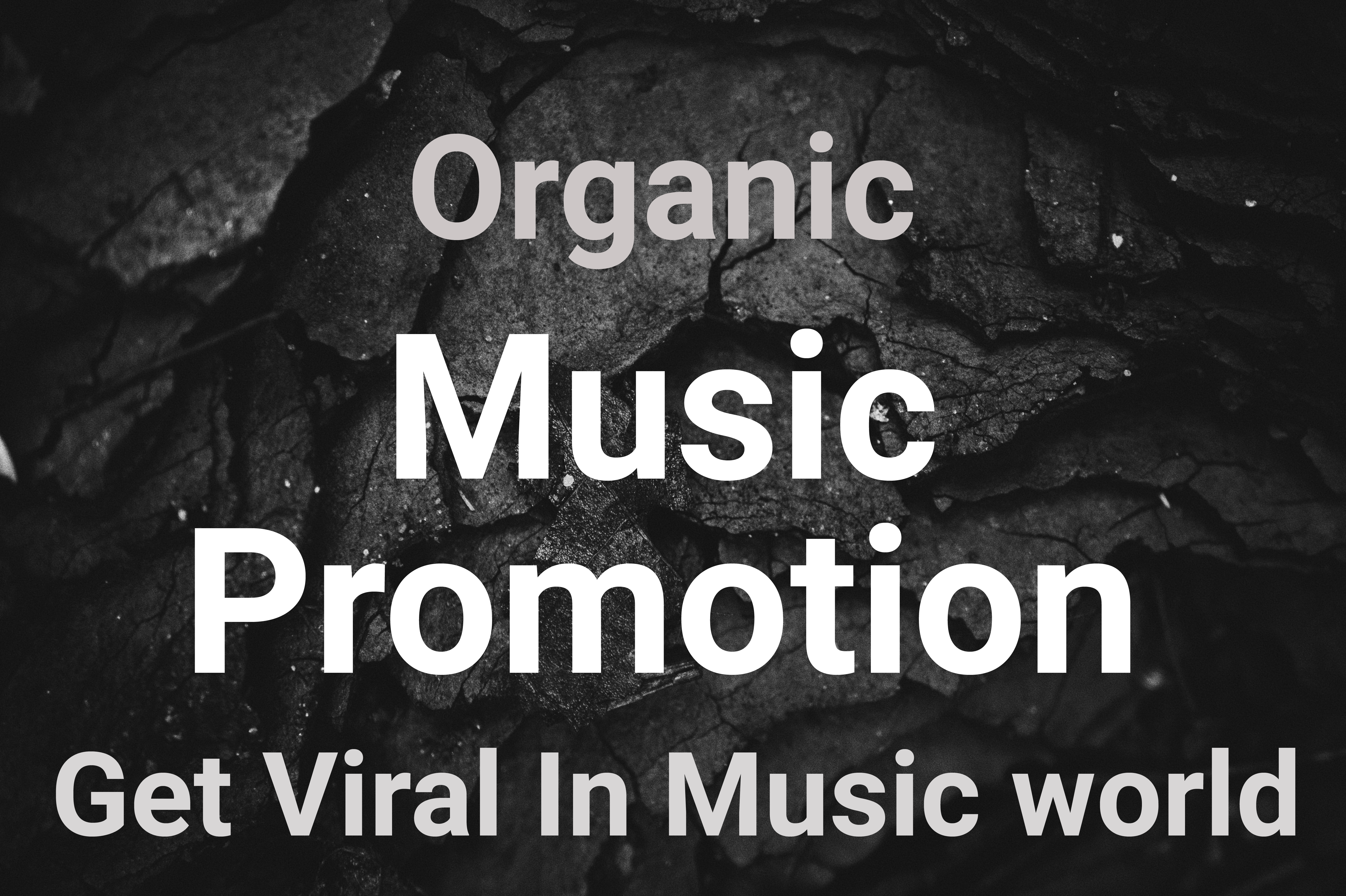 Rank your music album or playlists through organic music promotion strategy