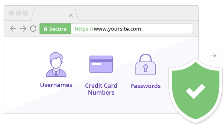 I will purchase and install SSL on your webserver with issued to your own site