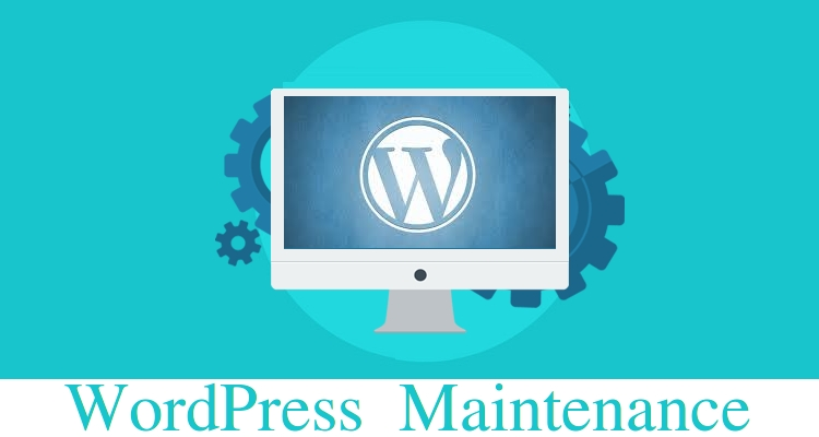 WordPress Monthly Checkup/ Maintenance - Installing, Theme, Plugin, HomePage, Form, Post, SEO, WooCommerce
