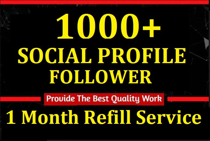 Instant 1000+High Quality Profile Followers Social Media Marketing