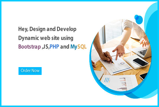 Professional Dynamic Web Site Development