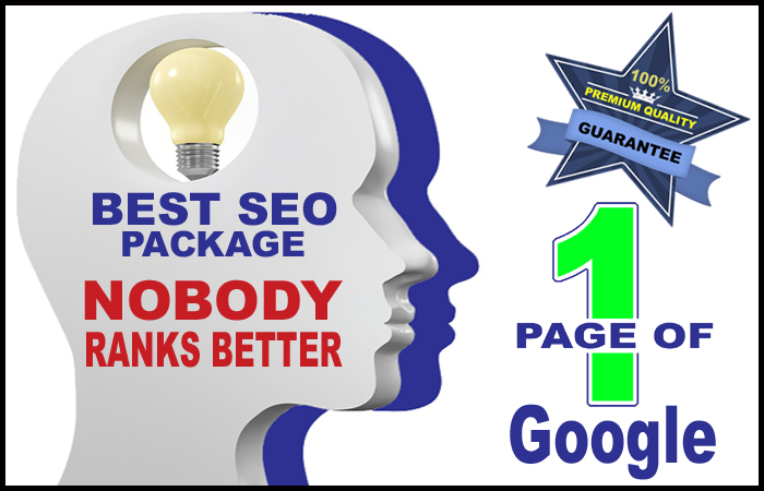 BEST SEO PACK,  Rank On 1st Page Of Google - Premium Quality High DA Backlinks To Get On Page 1