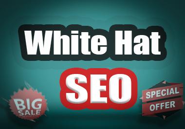 Web 2.0 Niche 15 White Hat SEO Backlink Fast Index on Google Ranking Service