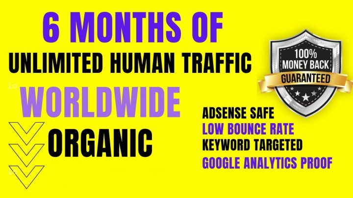 UNLIMITED Worldwide Real Website TRAFFIC for 6 months