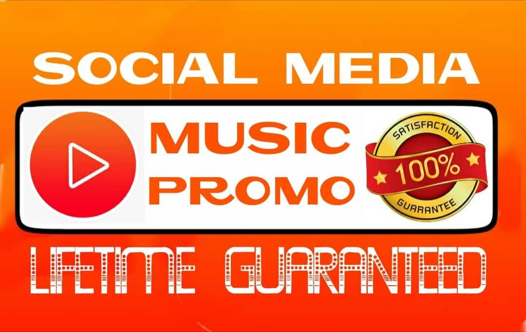 Do social media music promotion professionally