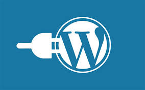 Manage design a professional wordpress website or web design