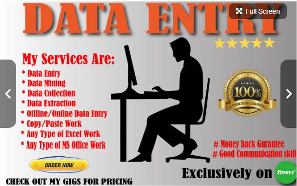 Complete any type of data entry or web research job