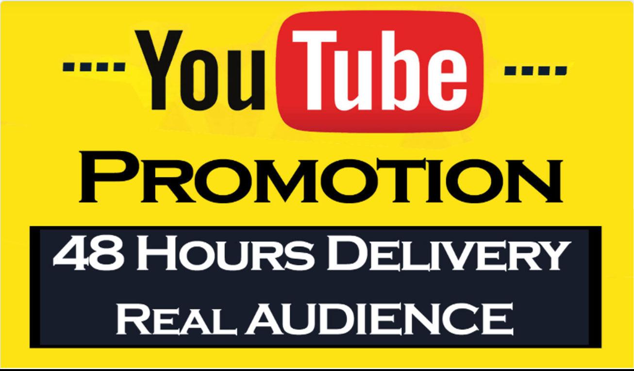 YouTube Video promotion via Social media Marketings