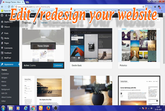 I will create, redesign or customize WordPress website