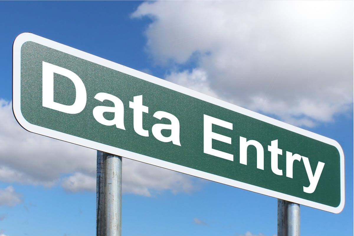 I will do perfect data entry work and web research