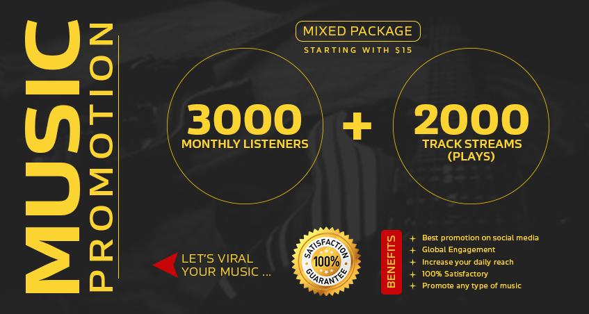 Express 3000 Monthly Listeners + 2000 Track Play For Promote Your Music