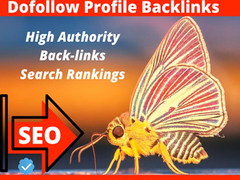 I will do manually create 20 dofollow profile backlinks