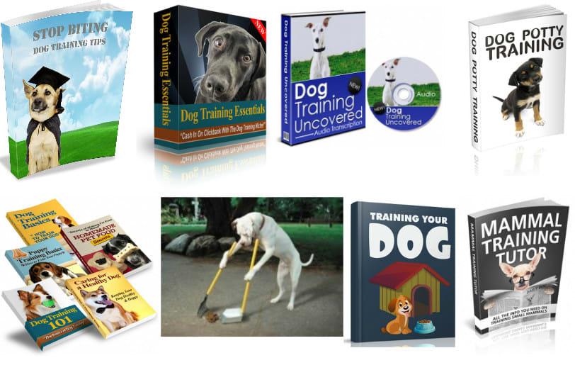 Provide 45 plr dog training ebooks,  2 200 pets articles and 9 bonuses