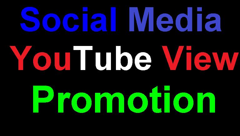 Get 500 HQ Non Drop Social Media Promotion Service