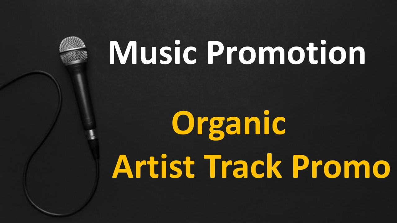 Organic Music Promotion to Your Track or playlist