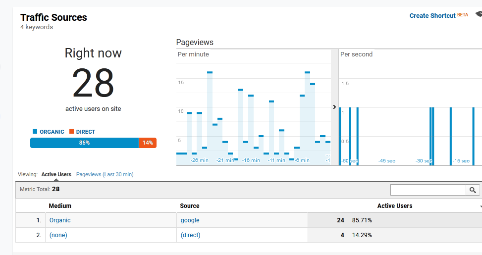 GEO Targeted Google Keyword ADSENSE ACTIVE Traffic 24H - 2+ Min Sessions - 5-15 Bounce - 99 Unique