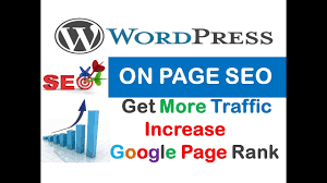 I will provide on page SEO for complete your wordpress website